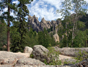 Black Hills Granite Needles