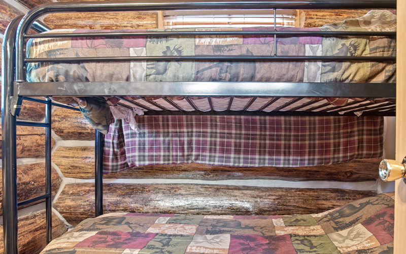 Black Hills Cabins 10