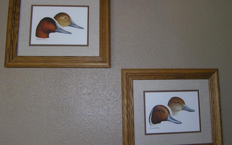 Cabin 11 Ducks - South Dakota