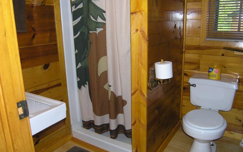 Cabin Rental - Cabin 2 bath