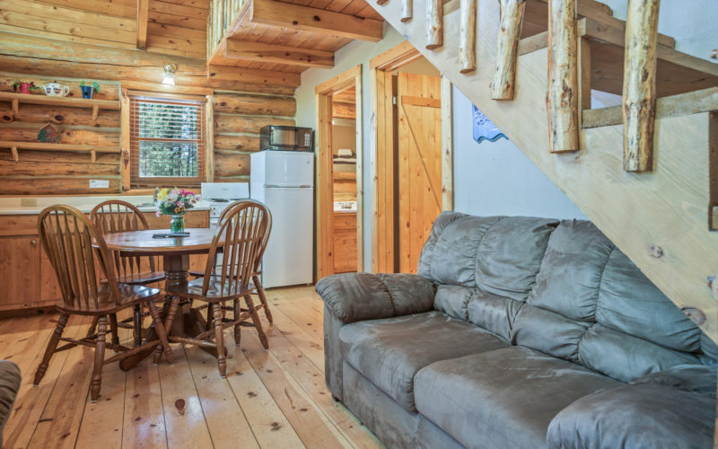 Black Hills Cabin Rental 7 Living