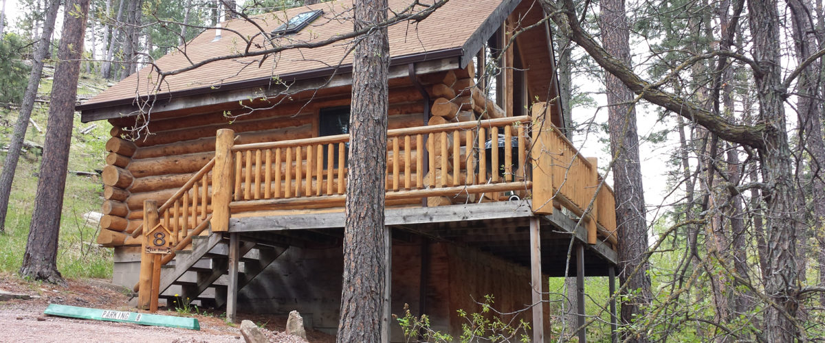 Black Hills Rental Cabin 8